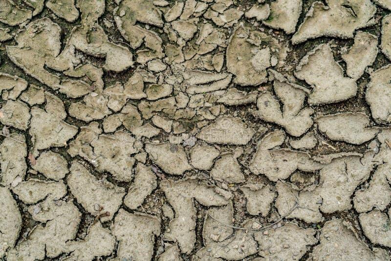 треснутый район неорошаемого земледелия стоковое фото rf