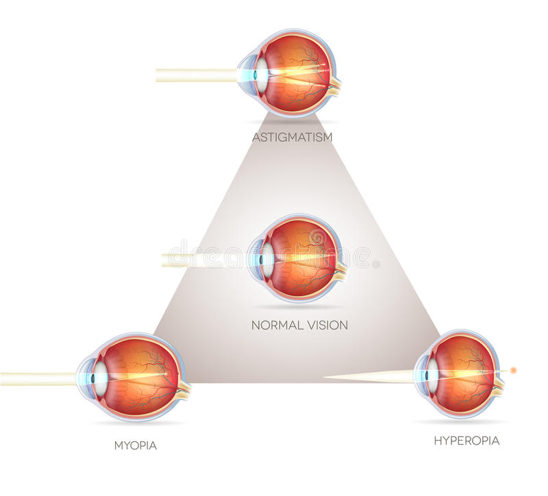 Треугольник зрения глаза иллюстрация штока
