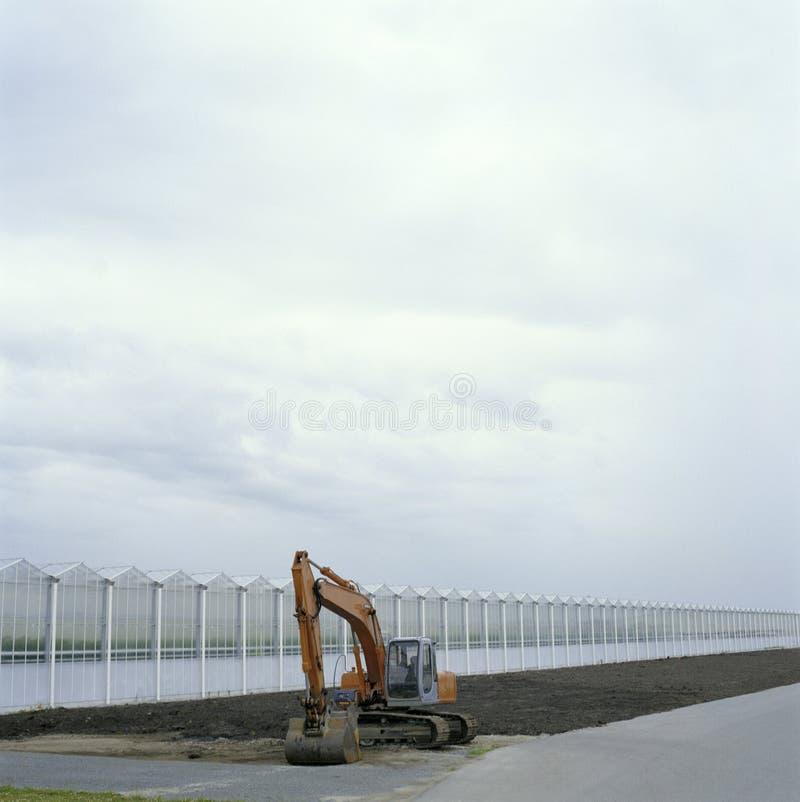 триктрака стоковые фотографии rf