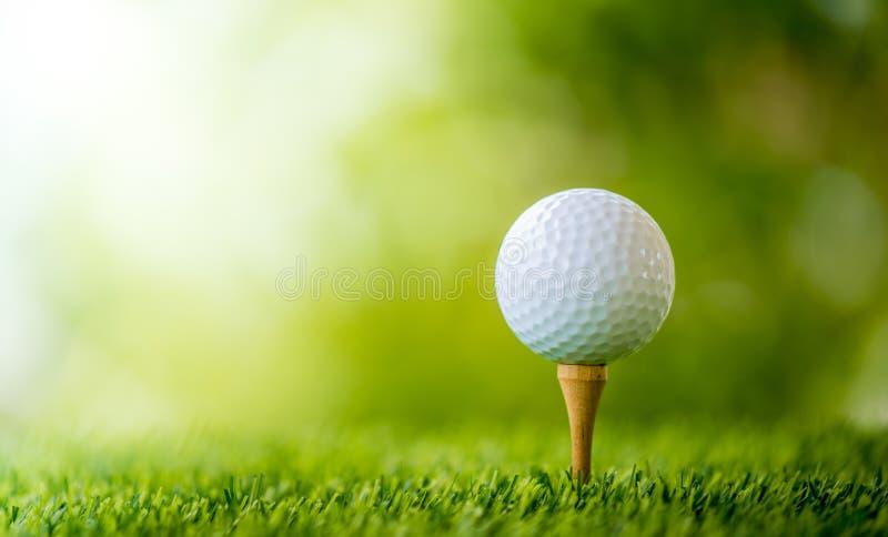 тройник путя гольфа клиппирования шарика изолированный изображением стоковое изображение rf