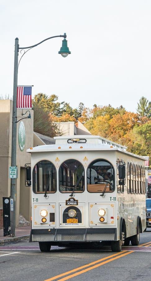 Троллейное обеспечение транспорта Main Street Lake Plкислота стоковое фото