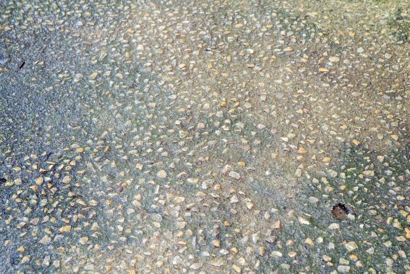 Тропа бетонной плиты стоковые фото