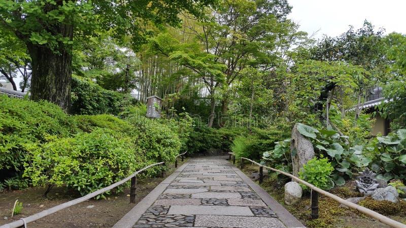 Тропа в Киото стоковое изображение