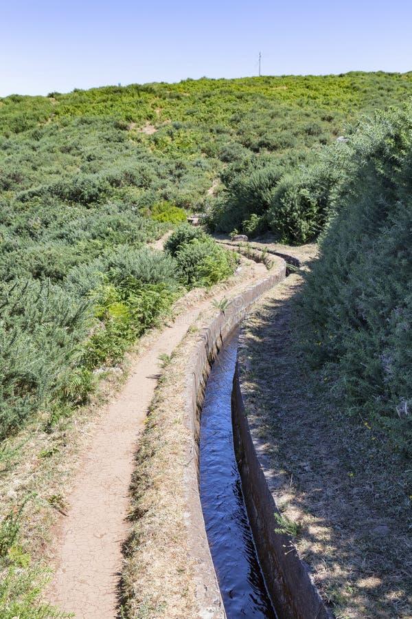 Тропа в Мадейре стоковое фото rf