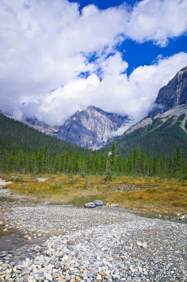 Download Тропа в Yo-ho национальном парке, на канадской горе скалистых гор Стоковое Фото - изображение насчитывающей columbia, природа: 81804780