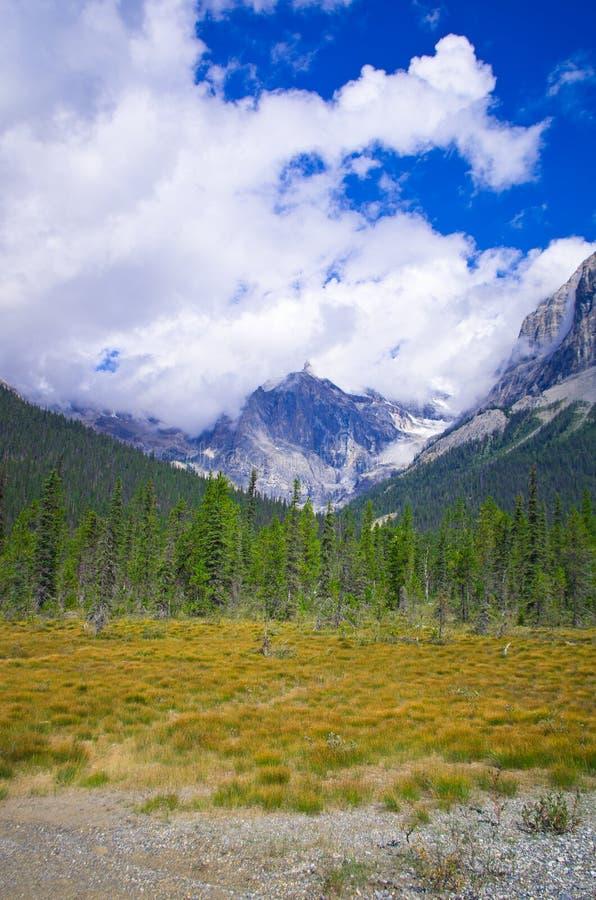 Download Тропа в Yo-ho национальном парке, на канадской горе скалистых гор Стоковое Фото - изображение насчитывающей мир, парк: 81804852