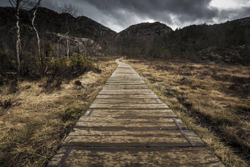 Тропа и высокогорный ландшафт ro амвона Preikestolen стоковые изображения