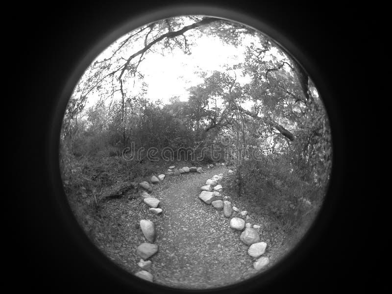 тропа круглая стоковая фотография