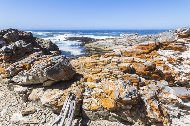 Тропа на побережье национального парка Tsitsikamma, Южной Африки стоковая фотография