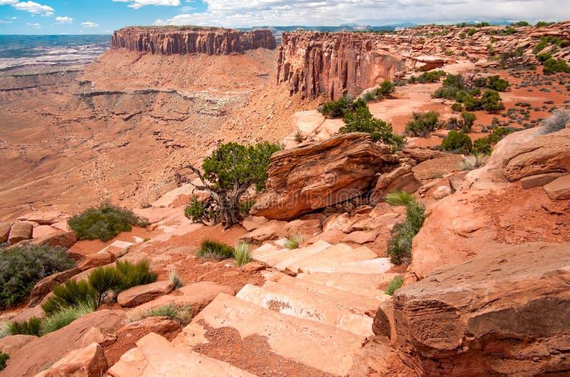 Тропа оправы каньона стоковая фотография