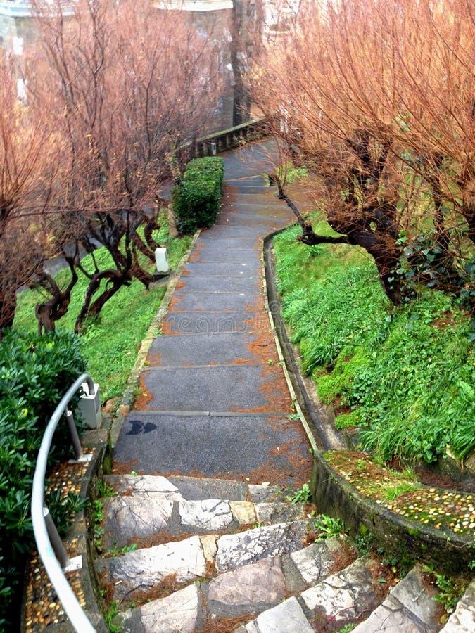 Тропа с каменными лестницами в парке стоковая фотография rf