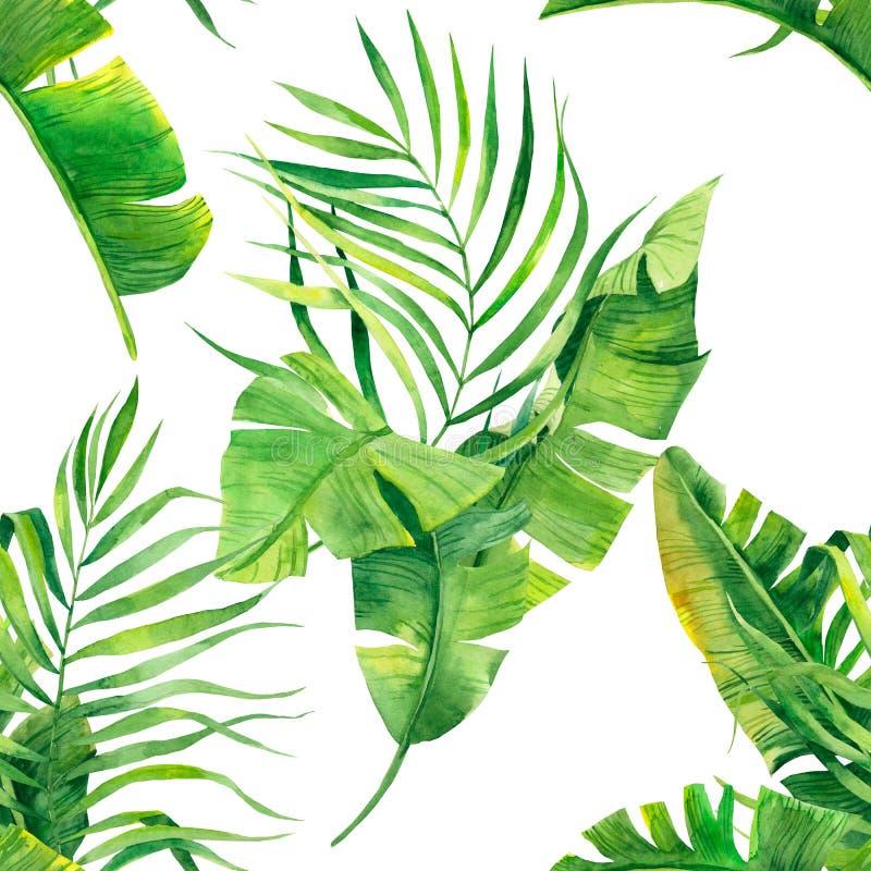 Тропическая безшовная картина с экзотическими листьями ладони Тропическая иллюстрация листвы джунглей Экзотические заводы Дизайн  стоковое фото rf