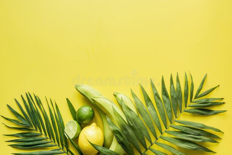 Тропическая граница плодов, банан, известка, выходит ладони на желтую предпосылку   Путешествие вытрезвителя стоковое фото rf