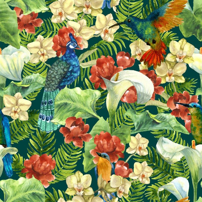 Тропическая картина с птицами рая иллюстрация вектора