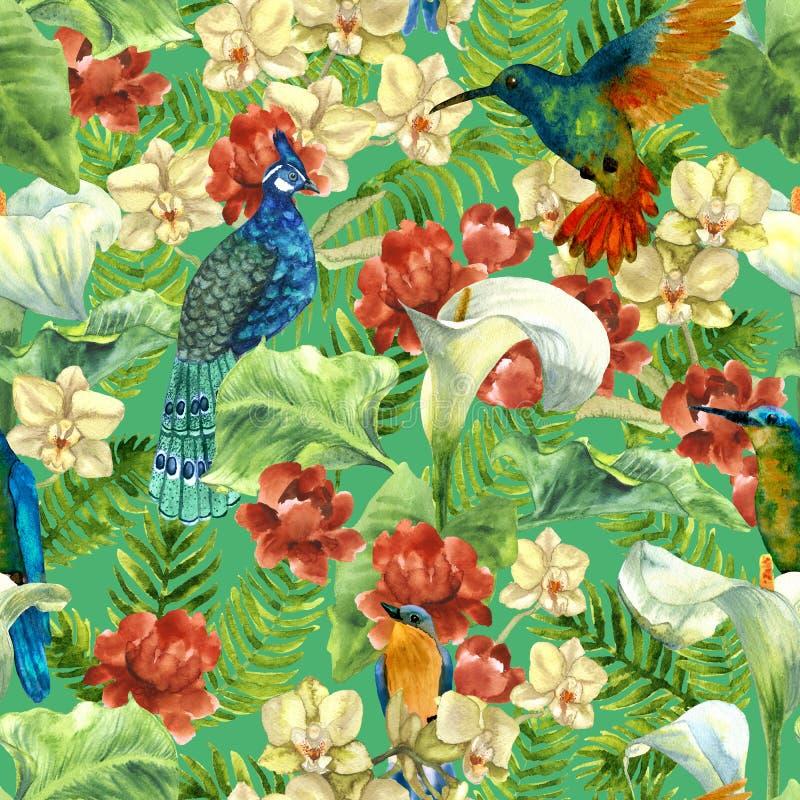 Тропическая картина с птицами рая бесплатная иллюстрация