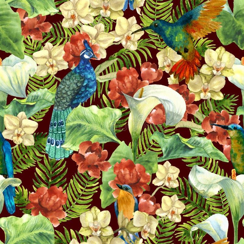 Тропическая картина с птицами рая иллюстрация штока