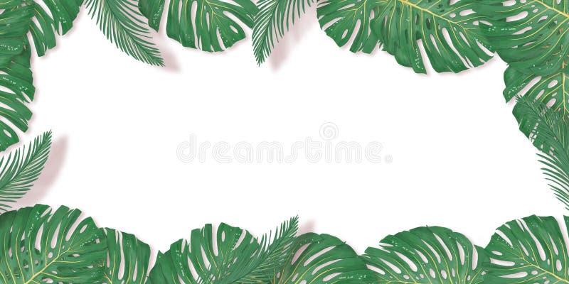 Тропическая ладонь выходит рамка на белый фон Лист лета тропические Экзотические гавайские джунгли, предпосылка летнего времени П иллюстрация вектора
