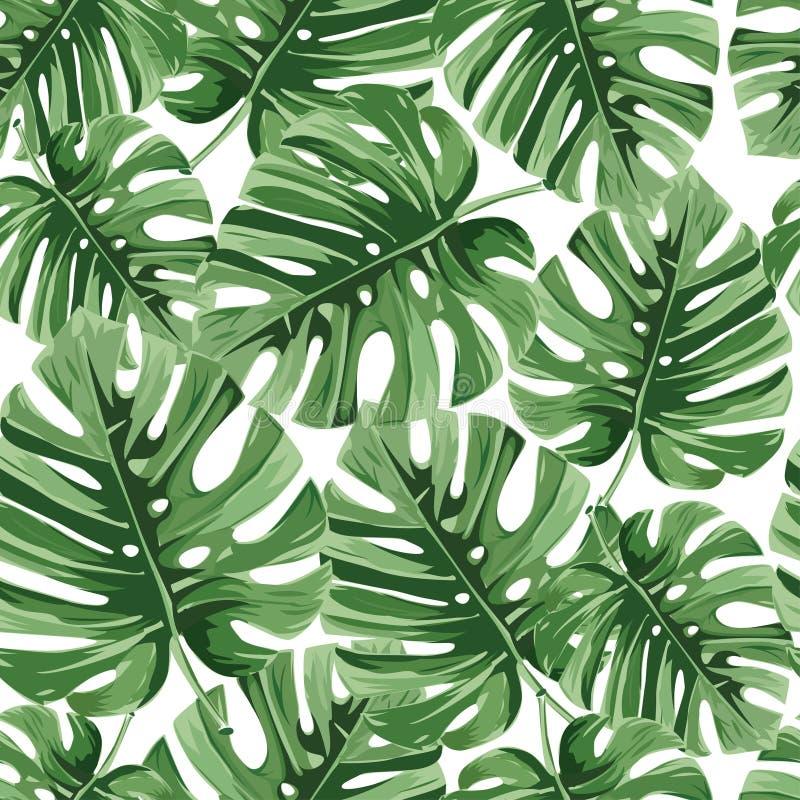 Тропическая ладонь выходит, цветочный узор вектора листьев джунглей безшовный стоковые фотографии rf