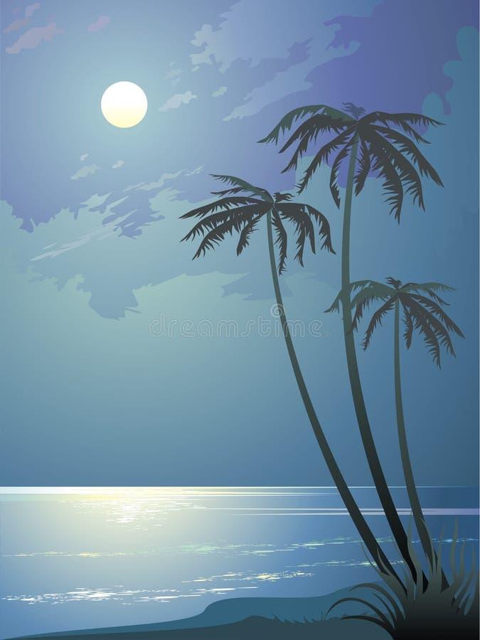 Тропическая ноча иллюстрация вектора