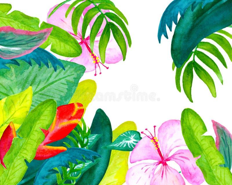 Тропическая открытка акварели цветков и листьев с местом для текста иллюстрация вектора