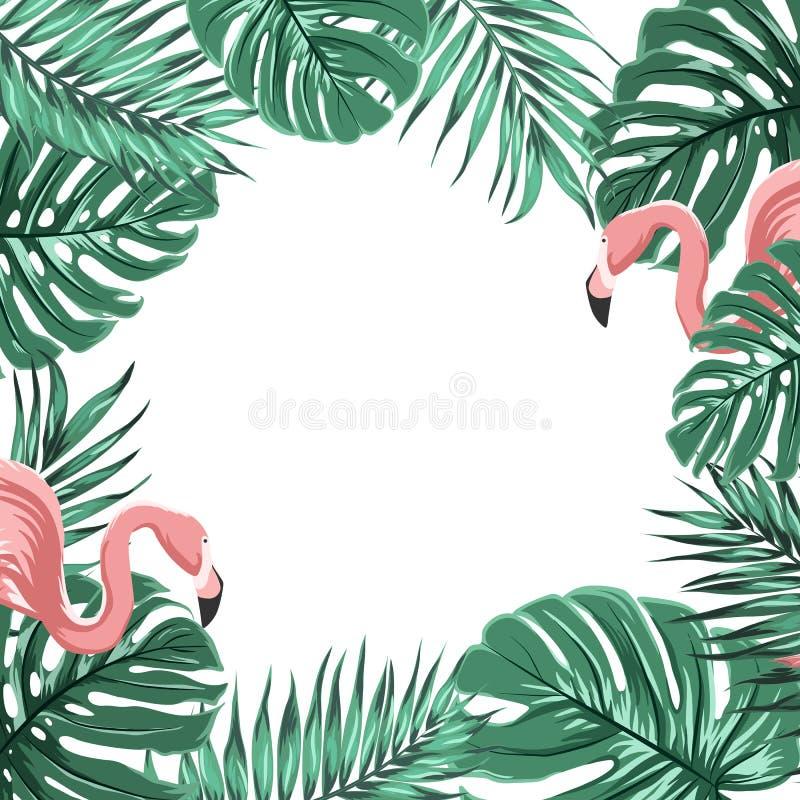 Тропическая рамка границы выходит розовые птицы фламинго иллюстрация вектора