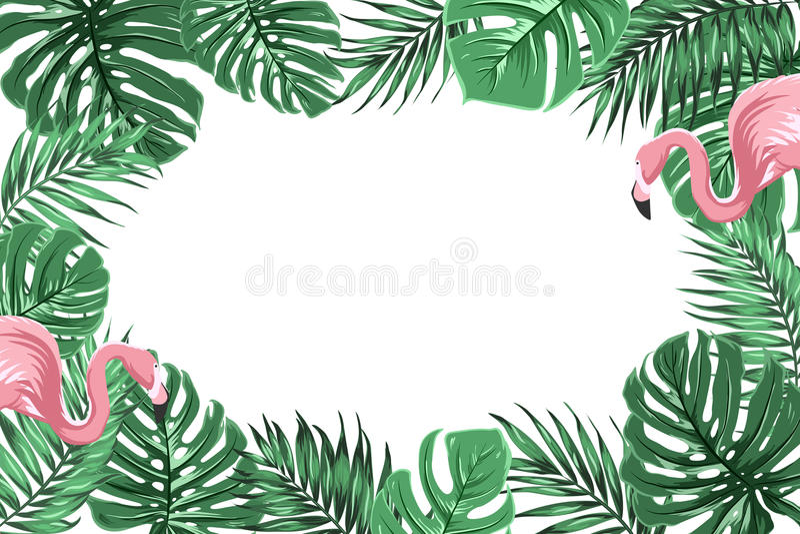 Тропическая рамка границы с джунглями выходит фламинго бесплатная иллюстрация