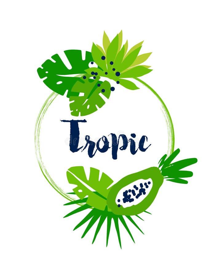 Тропическая рамка лета с листьями ладони, абстрактной папапайей и текстом на белой предпосылке Плоский дизайн иллюстрация вектора