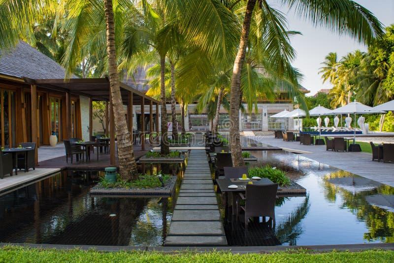 Тропическая установка ресторана outdoors с таблицами в воде окруженной пальмами на Мальдивах стоковое фото