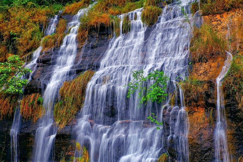 Тропические водопады во время осени стоковое изображение rf