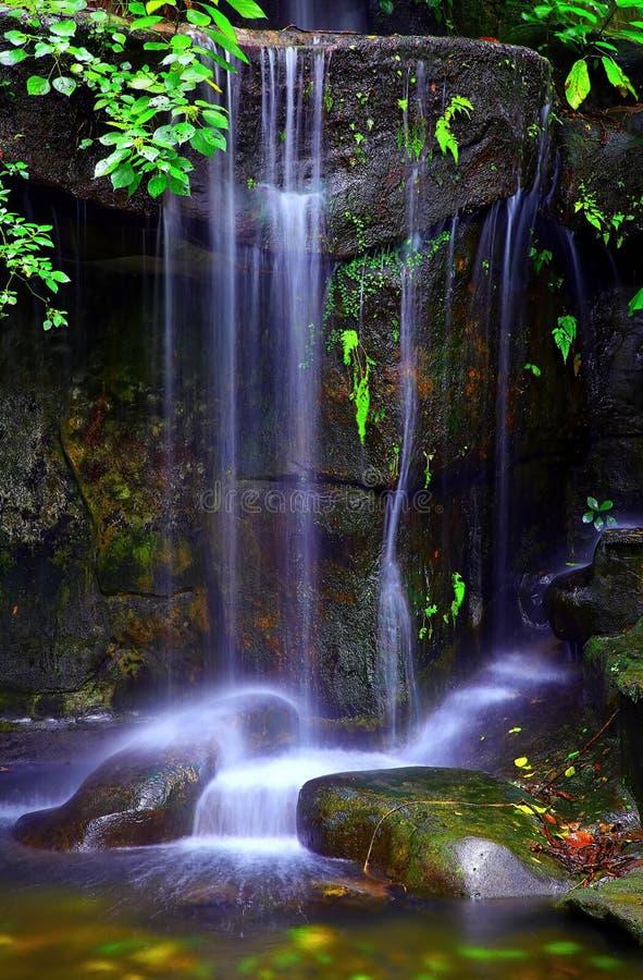 Тропические водопады в пещере стоковая фотография