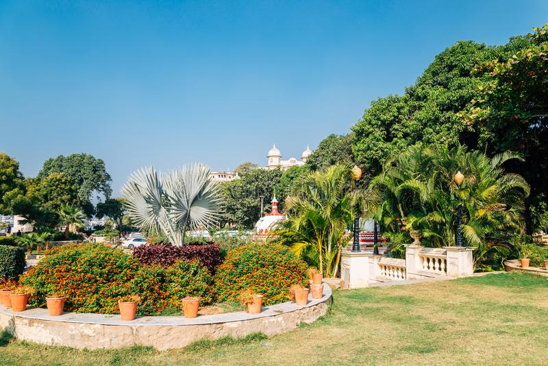 Тропические деревья паркуют около озера Pichola в Udaipur, Индии стоковые изображения rf
