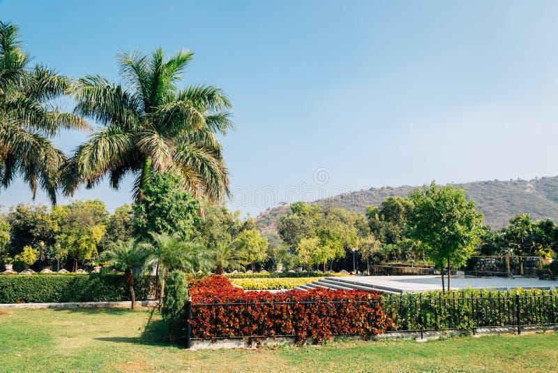 Тропические деревья паркуют около озера Pichola в Udaipur, Индии стоковые фотографии rf