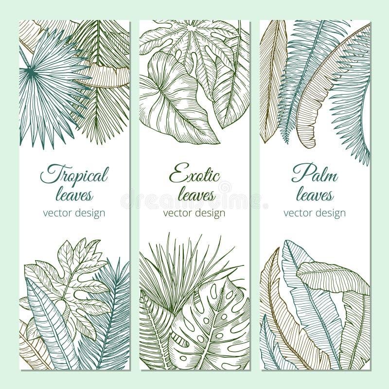 Тропические заводы с различными листьями и ветвями Комплект знамен с местом для вашего текста иллюстрация вектора