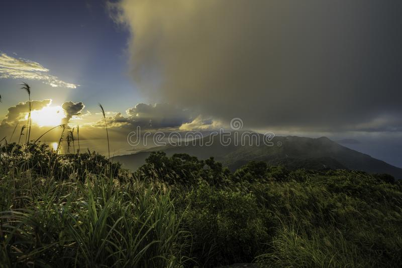 Тропические леса Вьетнама стоковые фотографии rf