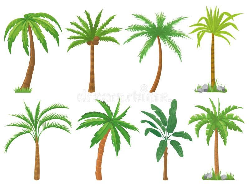 Пальмы Тропические листья зеленого цвета дерева, ладони пляжа и ретро набор вектора Калифорнии изолированный растительностью бесплатная иллюстрация