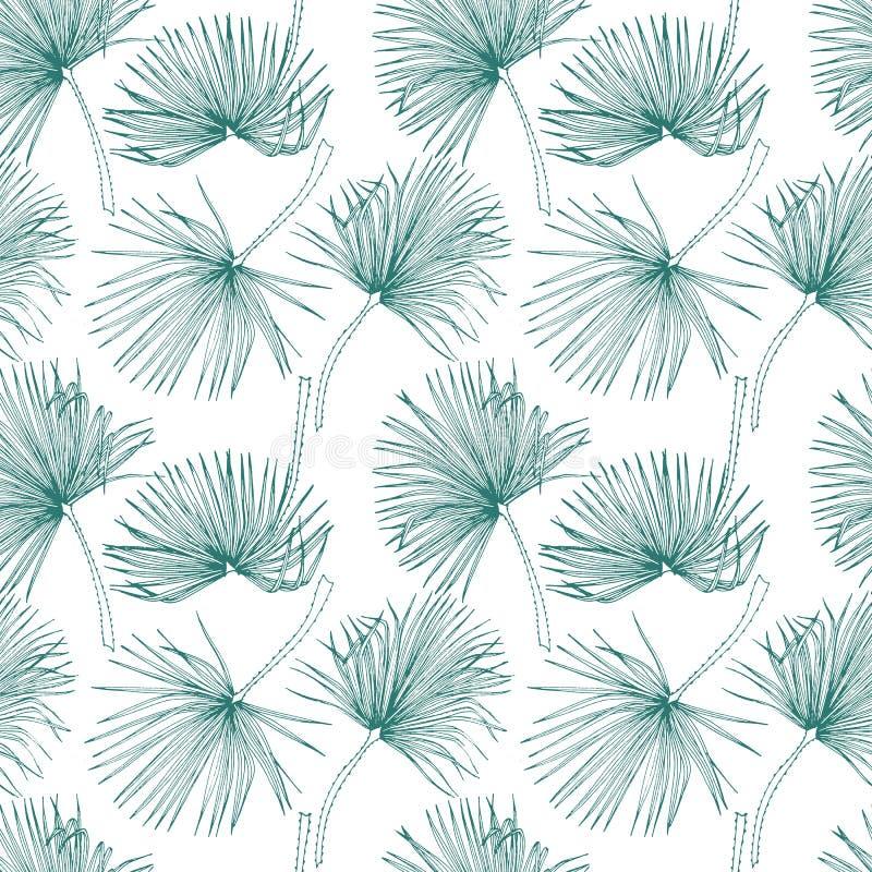Тропические листья, картина джунглей Безшовная, детальная, ботаническая картина Предпосылка вектора Листья ладони иллюстрация штока