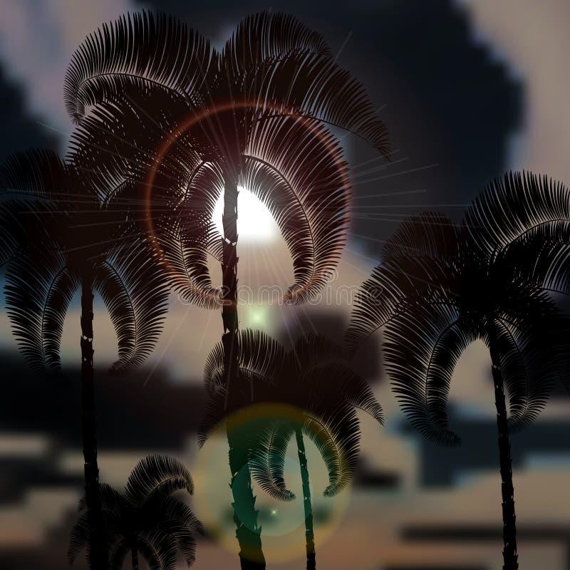Тропические пальмы перед штормом Лучи Солнця иллюстрация иллюстрация штока