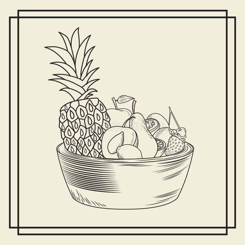 Тропические плоды в шаре бесплатная иллюстрация