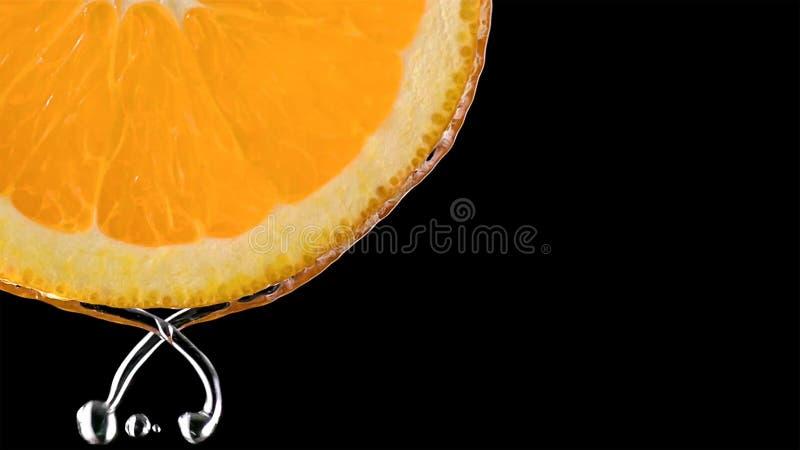 Тропические плоды citurs отрезают падать в воду стоковое изображение