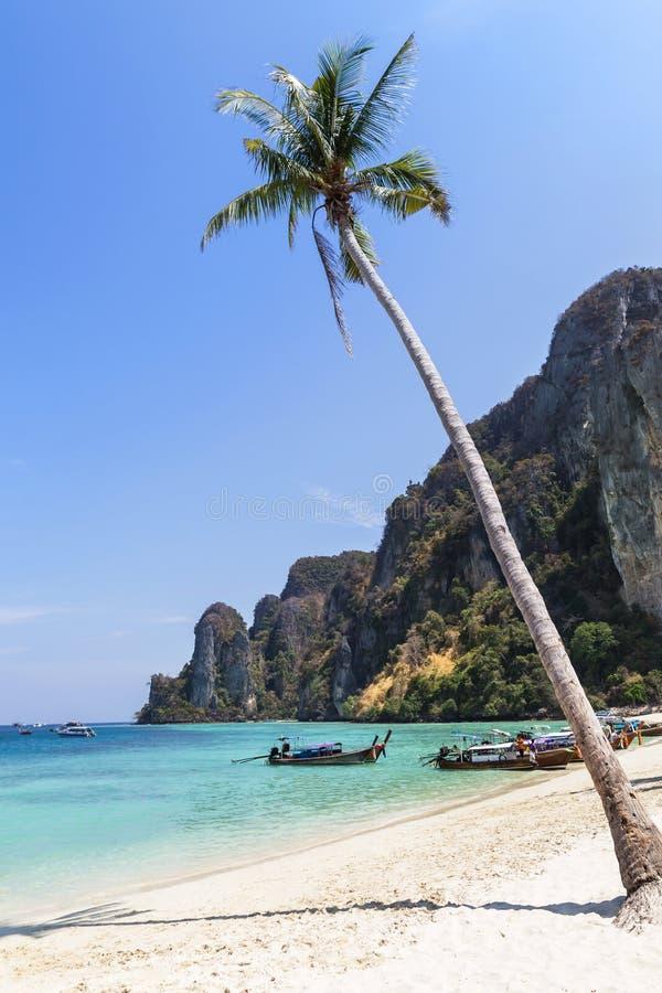 Тропические пляж и море с пальмой на phi phi надевают остров, Таиланд стоковые фото