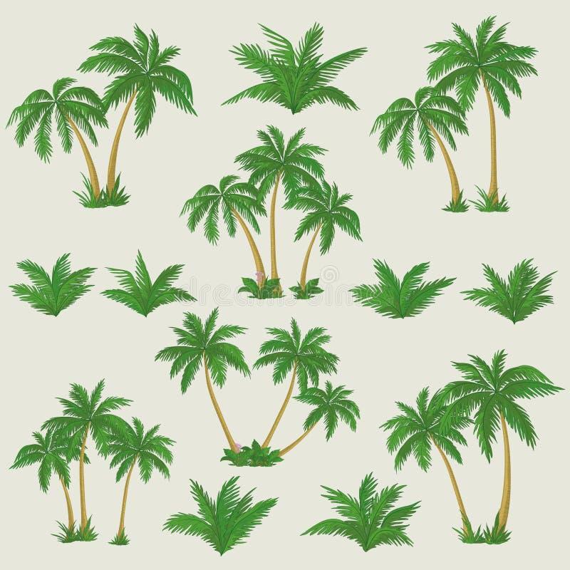 Тропические установленные пальмы бесплатная иллюстрация