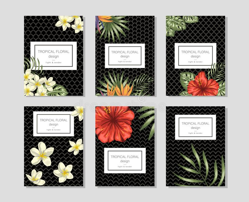 Тропические флористические шаблоны с пуками руки вычерченными бесплатная иллюстрация