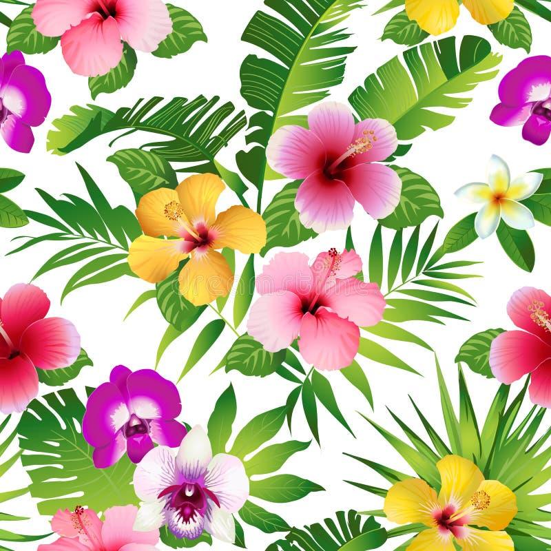 Тропические цветки и листья на белой предпосылке безшовно вектор иллюстрация штока