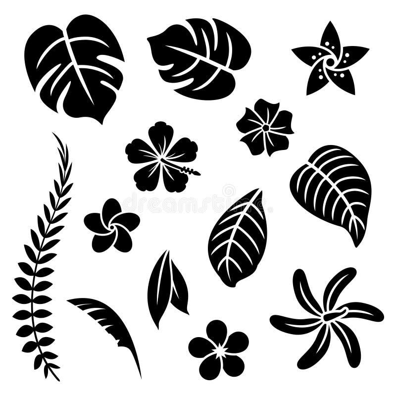 Тропические цветки иллюстрация штока
