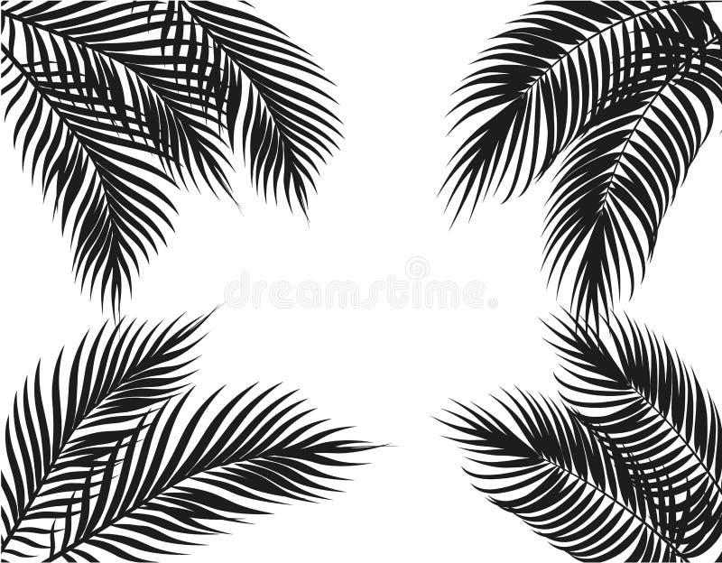 Тропические черно-белые листья ладони на 4 сторонах Комплект белизна изолированная предпосылкой иллюстрация иллюстрация вектора