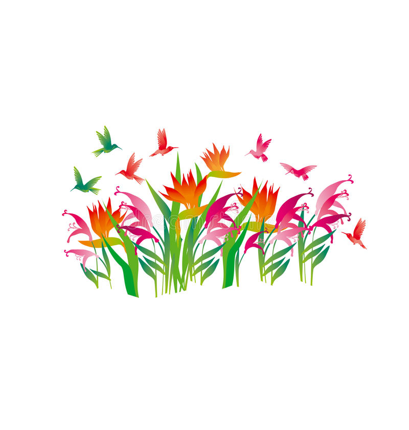 Тропические экзотические декоративные цветки иллюстрация штока