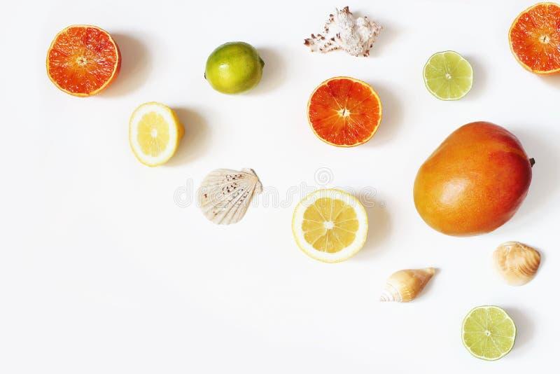 Тропические экзотические плод и состав раковины моря Куски манго, лимонов, апельсина и известки изолированные на белой таблице стоковая фотография