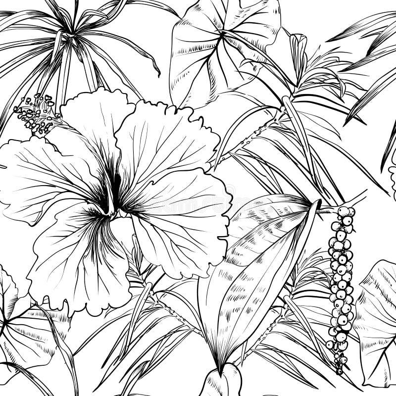 Тропические экзотические цветки и листья картина безшовная иллюстрация графика расцветки книги цветастая иллюстрация вектора
