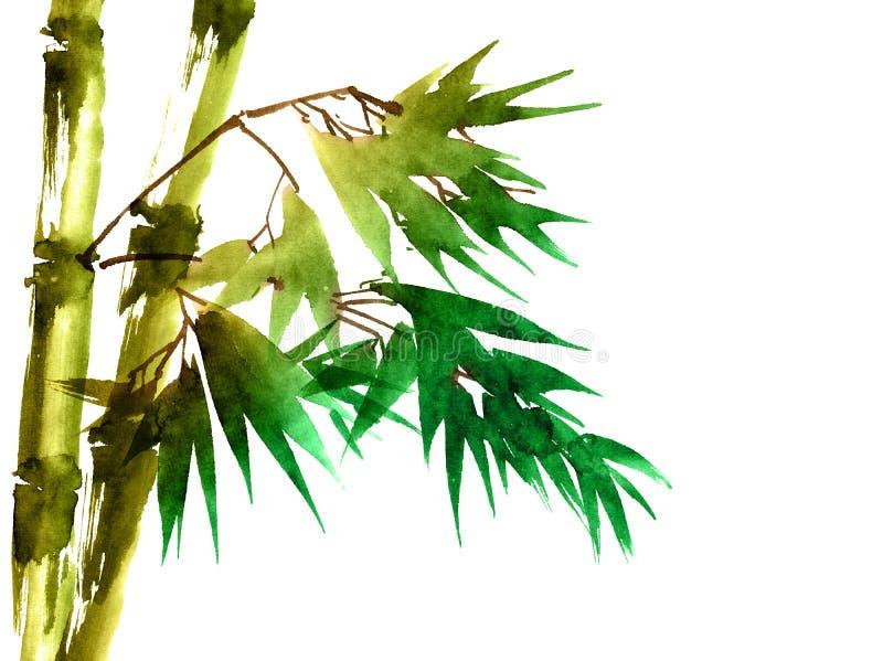 Тропический бамбук с листьями бесплатная иллюстрация