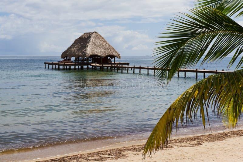 Тропический Белиз стоковое изображение rf